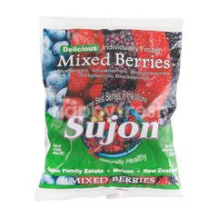 Sujon Mixed Berries Frozen