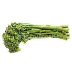 Broccolini Australian Grown Baby Broccoli