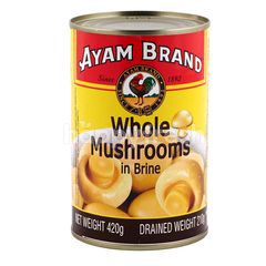 Ayam Brand Whole Mushrooms in Brine