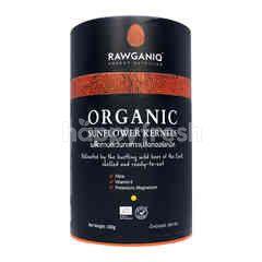 Rawganiq Organic Sunflower Kernels