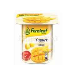 Fernleaf Mango Flavoured Yogurt