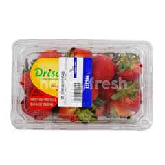 Driscoll's Strawberries Fraises