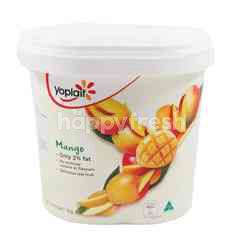 Yoplait Mango Yogurt