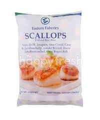 Seatrek U.S. Scallop
