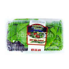Live Well Crunchy Fresh Dry Mix Salad