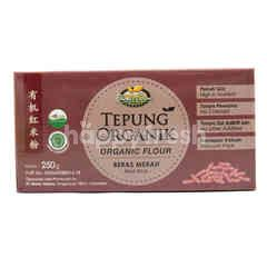 Bionic Farm Organic Flour Red Rice