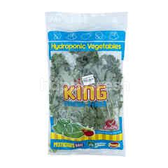King Fresh Farm Aeroponic Kale Curly