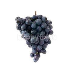 US Autumn Royal Seedless Grape