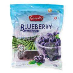 Sunny Day Frozen Blueberry