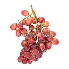 Eat Fresh Seedless Red Grapes