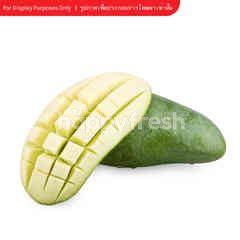 Tesco Kiew Savoey Mango