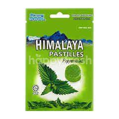 Big Foot Himalaya Pastilles Peppermint