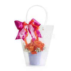 Emme Florist Clear Bag Amanda