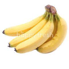 Dole Dole Banana