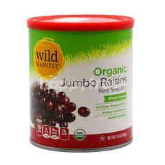 Wild Harvest Organic Red Seedless Jumbo Raisins