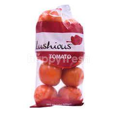 LUSHIOUS Tomato