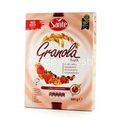 Sante Granola Fruit Cereal