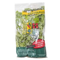 Amazing Farm Aeroponic Green Spinach