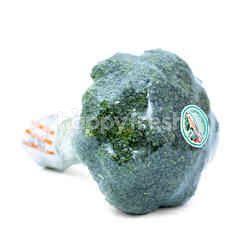 Brokoli Lokal