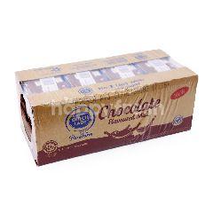 Dutch Lady Chocolate Flavoured Milk (24 Pax)