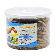 Bengy Large Dry Mealworms (Eggs + Honey)