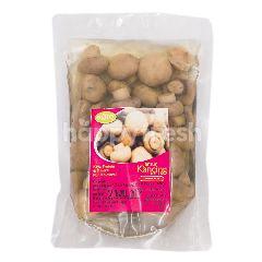 Agro Arum Jamur Kancing Utuh