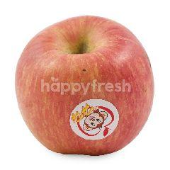 RRT Fuji Apple
