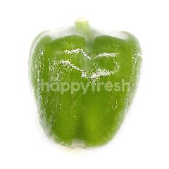 Green Bell Pepper (Lada Bengala Hijau)