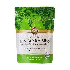 Country Farm Organics Certified Organic Raisins Green Seedless
