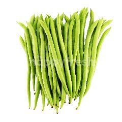 FOOD FOREST FARM French Bean
