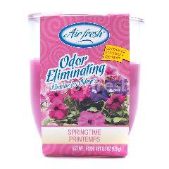 Air Fresh Odor Eliminating Springtime