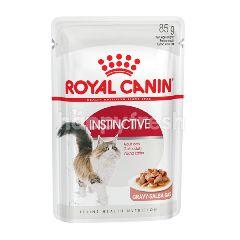โรยัล คานิน อาหารแมวแบบเปียก สำหรับแมวกินยากโตเต็มวัย อายุ 1 ปีขึ้นไป A01-309-54(O/R)