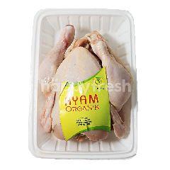 Ayam Organik Utuh