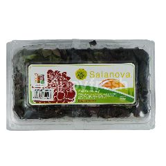 Amazing Farm Selada Butterhead Salanova Merah