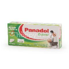 Gsk Panadol Extend