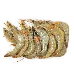 Jerbung Shrimp AK 60-70