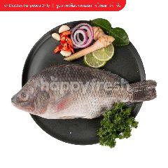 Tesco Nile Tilapia Fish