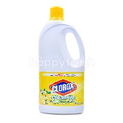 Clorox Clean-Up All-Purpose Cleaner With Bleach