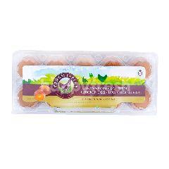 Farm Table Telur Rendah Kolesterol