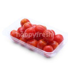 HIGHLAND FRESH Cocktail Tomato