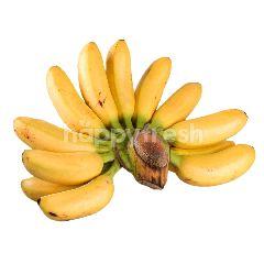 กูร์เมต์ มาร์เก็ต กล้วยไข่ (1 หวี)