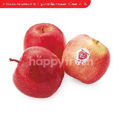 กูร์เมต์ มาร์เก็ต แอปเปิ้ล พิงค์เลดี้