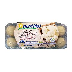 NUTRI PLUS Eggs