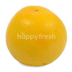 Sweet Jaffa Orange