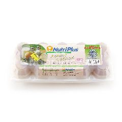 Nutriplus Fresh Eggs Low Cholestrol