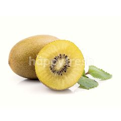 Zespri Kiwi Sun Gold New Zealand