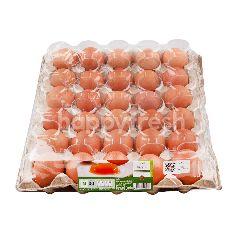 เทสโก้ ไข่ไก่สด ขนาด M (30 ฟอง)