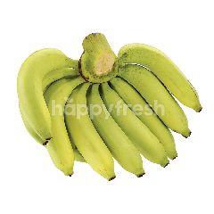 เทสโก้ กล้วยหอม (1 หวี)