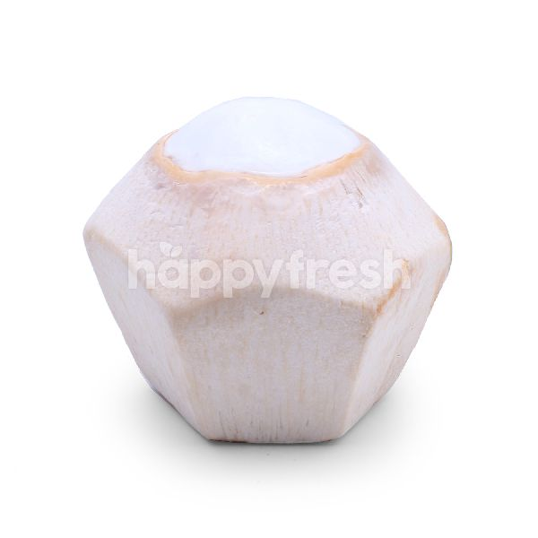 Product: Coconut - Image 2