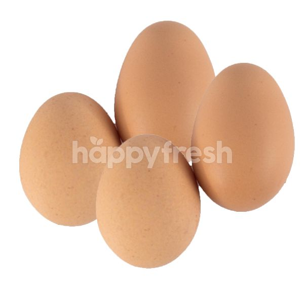 Product: Chicken Egg - Image 1